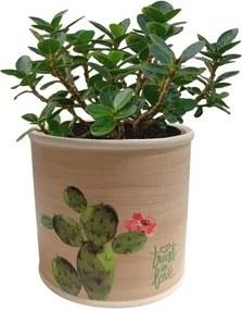 Cachepot de Cerâmica Bege Cactus Médio Urban