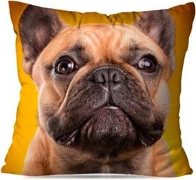 Almofada Love Decor Avulsa Bulldog Amarelo