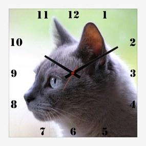 Relógio de Parede Personalizado Pet Gato Cinza 30x30cm