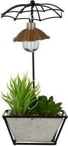 Vaso Umbrella Com Flor Artificial Kasa Ideia