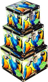Conjunto com 3 Baús Quadrados Araras Amazônia