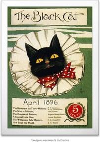 Poster The Black Cat (40x60cm, com Painel)