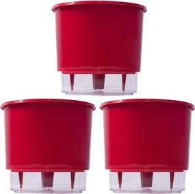 Jogo 3 Vasos Raiz Auto Irrigável Rainbow Vermelho 12x11cm