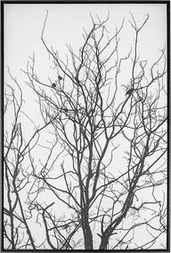 Tela Preto e Branco II em Canvas - 70x120cm - Moldura Preta  Kleiner Schein