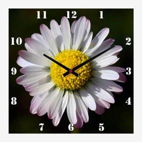 Relógio de Parede para Cozinha Flor Margarida Branca 30x30cm