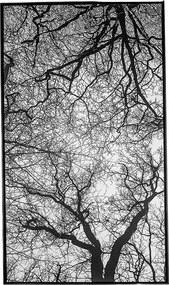 Tela Inverno em Canvas - 50x70cm - Moldura Preta  Kleiner Schein