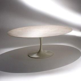 Mesa de Jantar Saarinen Oval Alumínio e Aço Pintura Brilhante Studio Mais Design by Eero Saarinen