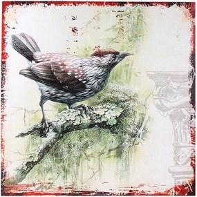 Tela Impressa Pássaro Verde II