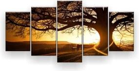 Quadro Decorativo Árvore Centenária Ao Pôr Do Sol 5 Peças