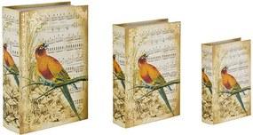 Conjunto com 3 Caixas Livro Notas Musicais Pássaro