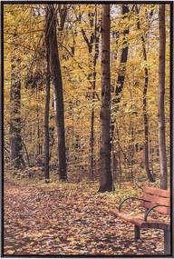 Tela Outono III em Canvas - 70x120cm - Moldura Imbuia  Kleiner Schein
