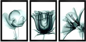 Quadro Oppen House 60x120cm Flores Abstrato Transparentes Moldura Preta Estilo Raio-x Decorativo Interiores Mod:OH009