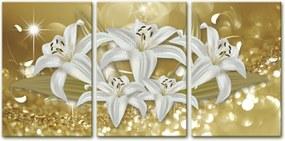 Quadro Oppen House  40x90cm Canvas Flores de Midas Decorativo Interiores