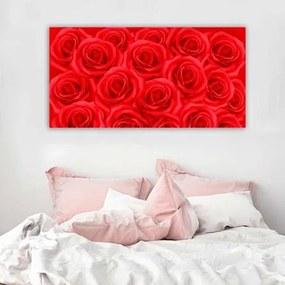 Painel Fotográfico Rosas 875479
