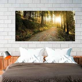Painel Fotográfico Floresta Da Montanha
