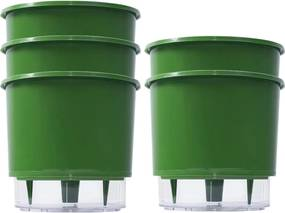Jogo 5 Vaso Raiz Auto Irrigável Rainbow Verde Escuro 12x11cm